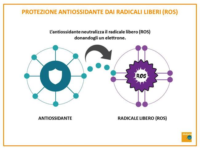 protezione antiossidante dei radicali liberi
