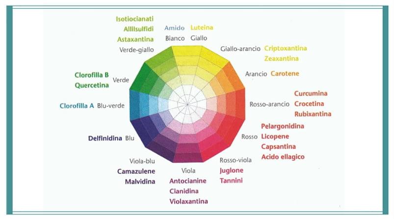 sostanze-colorrate-frutta-verdura