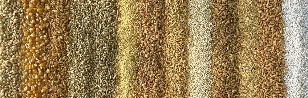 cereali-integrali-e-raffinati-top