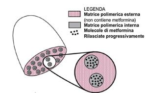 metformina-a-lento-rilascio-rimborsabile-legenda