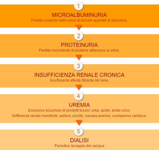 acido urico dieta y tratamiento dieta para reducir acido urico y colesterol acido urico funcion en el organismo